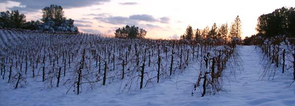 Shaker Ridge in winter